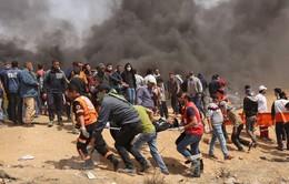 Bạo lực đẫm máu tại dải Gaza