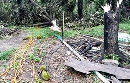 Hỗ trợ người dân khắc phục hậu quả lốc xoáy