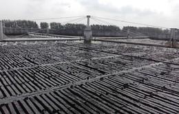 """Cần Thơ: Nhà máy xử lý nước thải sinh hoạt """"đắp chiếu"""" đã đạt chuẩn"""