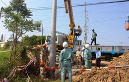Phú Yên khởi công dự án cải tạo và phát triển lưới điện phân phối