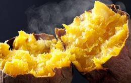 7 lợi ích sức khỏe của khoai lang ít người biết