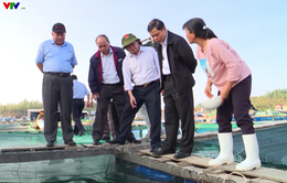 Bộ trưởng Bộ NN & PTNT thăm các hộ nuôi trồng thủy sản tại Khánh Hòa