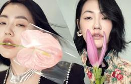 Em gái Từ Hy Viên lạnh lùng tạo dáng bên hoa