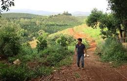 Kỷ luật khiển trách Ban Thường vụ Huyện ủy Đắk G'long, tỉnh Đắk Nông