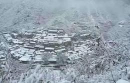Trung Quốc: Tuyết rơi bất thường ở thủ đô Bắc Kinh