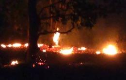 Cháy lớn tại Khu bảo tồn thiên nhiên Tà Cú