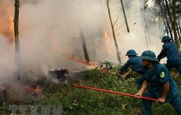 Cảnh báo nguy cơ cháy rừng