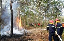 Công điện khẩn yêu cầu xây dựng phương án phòng cháy, chữa cháy rừng