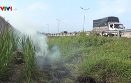 Bộ Giao thông Vận tải đề nghị ngăn chặn đốt rơm rạ gây mất ATGT