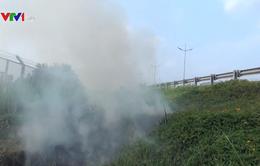 Bất chấp nguy hiểm, người dân vô tư đốt cỏ ven cao tốc TP.HCM - Trung Lương