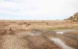 Lòng hồ Ông Kinh trơ đáy vì hạn hán ở vùng ít mưa nhất Việt Nam