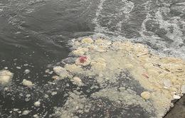 Nước thải tràn ra biển lớn sau cơn mưa kéo dài