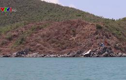 Gia tăng tình trạng phá rừng chiếm đất trên vịnh Vân Phong