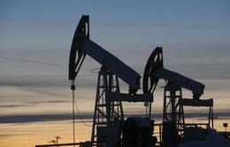 Dự án trao đổi dầu mỏ Iran-Iraq sẽ chính thức ra mắt cuối tháng 4/2018