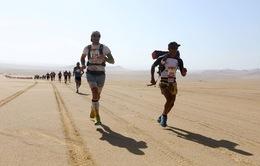 Cuộc thi chạy marathon trên cát