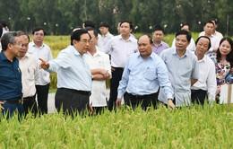Thủ tướng Chính phủ đối thoại với nông dân Việt Nam