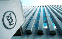WB cho Ấn Độ vay 420 triệu USD để ứng phó với biến đổi khí hậu