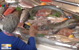 Thủy sản Việt Nam chỉ có thể xuất khẩu khi có nguồn gốc rõ ràng