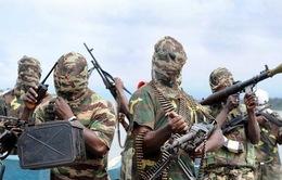 LHQ: Sẽ phải mất nhiều năm mới có thể xóa sổ Boko Haram