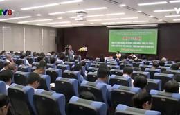 Đà Nẵng triển khai công tác phát triển rừng, ứng phó thiên tai tìm kiếm cứu nạn