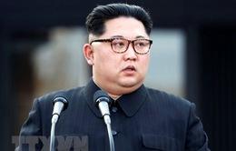 Nhà lãnh đạo Triều Tiên lạc quan trước cuộc gặp với Tổng thống Mỹ