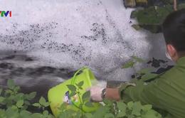 Khó xử lý các cơ sở gây ô nhiễm môi trường