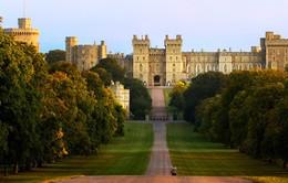 Hoàng tử Harry sẽ trao nhẫn cưới cho vị hôn thê ở đâu?