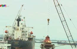 UBND tỉnh Bình Định yêu cầu mở rộng cảng Quy Nhơn