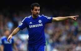 Chelsea sa sút, Fabregas thẳng thắn chỉ trích đồng đội