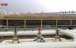 Formosa Hà Tĩnh  cơ bản hoàn thành khắc phục sự cố môi trường biển