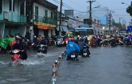 TP.HCM kêu gọi đầu tư 16 dự án chống ngập và xử lý nước thải