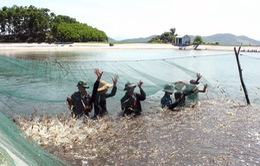 Tăng cường sử dụng năng lượng tái tạo để nuôi trồng thủy sản