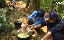 Gian nan hành trình tìm kiếm liệt sỹ nơi đất bạn Lào