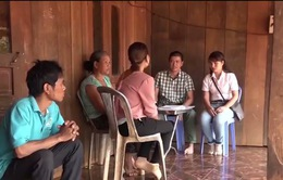 Thủ đoạn lừa bán điều non chiếm đất tại Bình Phước