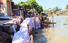 Vĩnh Long di dời khẩn cấp các hộ dân ra khỏi khu vực sạt lở