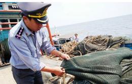 Quảng Bình phát hiện, xử phạt tàu giã cào tận diệt thuỷ sản vùng biển lộng