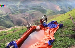 Báo động nạn ô nhiễm thuốc diệt cỏ ở Sơn La