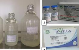 Vaccine cúm mùa do Việt Nam sản xuất rẻ bằng 1/3 hàng nhập