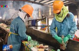 Ô nhiễm và lãng phí từ việc không phân loại rác tại nguồn