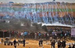 16 người Palestine thiệt mạng trong cuộc biểu tình phản đối Mỹ mở ĐSQ ở Jerusalem