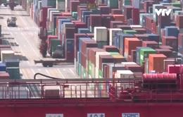Hàng hóa Mỹ bị kẹt tại cảng Trung Quốc