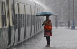Mưa bão hoành hành tại Ấn Độ, 41 người thiệt mạng