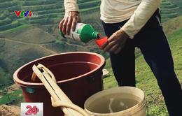 Mỗi năm, Việt Nam sử dụng 100.000 tấn thuốc bảo vệ thực vật