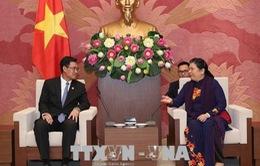 Tăng cường tình đoàn kết Việt - Lào