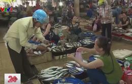 Ngư dân Hà Tĩnh ổn định cuộc sống sau 2 năm sự cố môi trường biển
