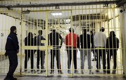 Thách thức với châu Âu khi tù nhân khủng bố được trả tự do