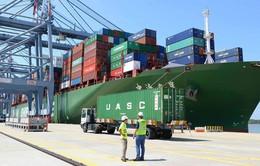 Xuất khẩu sang Ấn Độ tăng 104%