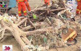 Huyện Cần Giờ, TP.HCM ô nhiễm nặng vì rác thải