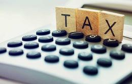 Nâng cao chất lượng quản lý thuế doanh nghiệp