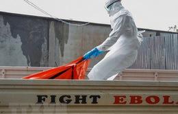 CHDC Congo xác nhận ca nhiễm virus Ebola mới